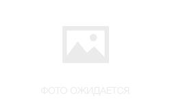 HP C8100 с СНПЧ